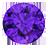 Amethyst (1)
